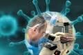 Лаборатория Лугара в Грузии: риски и возможности